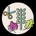 hierbas-fondo